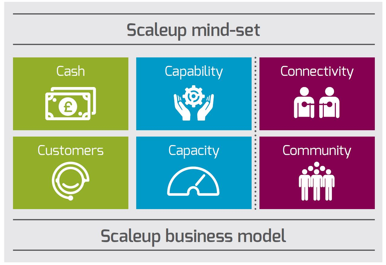Scaleup business model