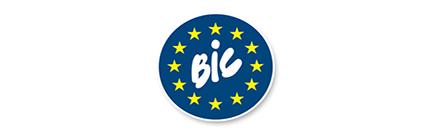 BIC Sales Programme